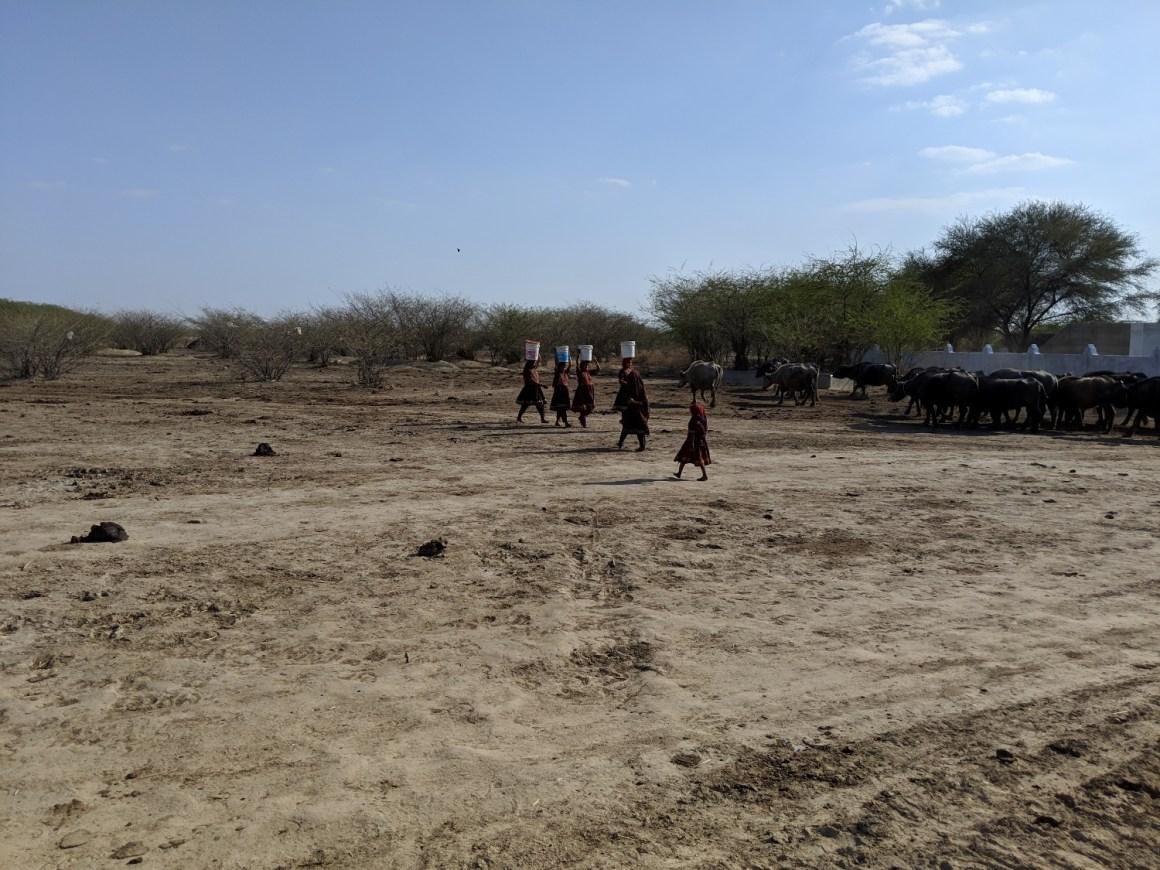 Gujarat Drought Photo Kabir Agarwal (13)