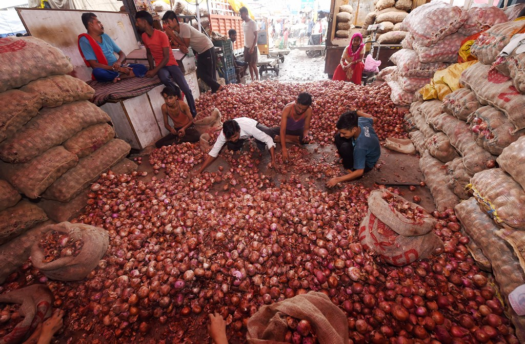 New Delhi: Lebourers sort onions at Azadpur Mandi, a major market of the Agriculture Produce Marketing Committee (APMC), in New Delhi, Sunday, Sept. 22, 2019. Onion prices are spiralling reportedly due to shortage of supply, and also amid reports of crop damage and delay in arrivals of new crop. (PTI Photo/Shahbaz Khan) (PTI9_22_2019_000015B)