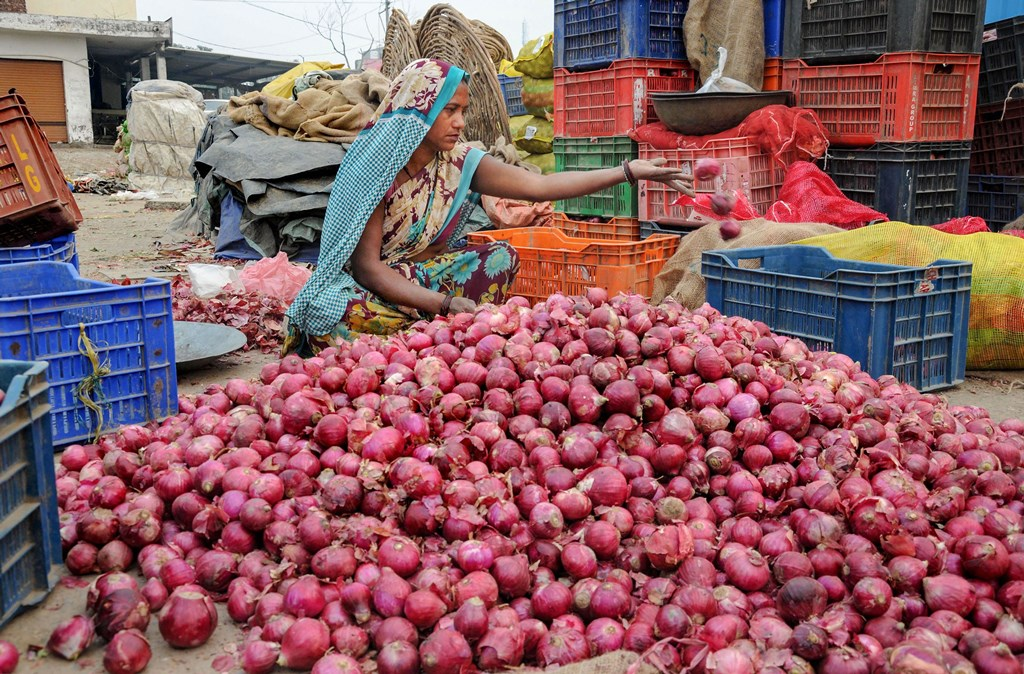 Amritsar: A man sorts onions at a wholesale vegetable market at Walla, on the outskirts of Amritsar, Wednesday, Nov. 6, 2019. The retail price of onions has risen by 45 per cent in the last one week to Rs 80/kg despite the central government's measures to boost supply and contain price rise. (PTI Photo)(PTI11_6_2019_000171B)