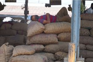 New Delhi: Labourers take rest on sacks at Azadpur Mandi during a nationwide lockdown to curb the spread of coronavirus, in New Delhi, Tuesday, April 21, 2020. The Azadpur Sabzi Mandi will remain open round the clock till the lockdown is lifted to ensure an uninterrupted supply of essentials in the national capital. (PTI Photo/Shahbaz Khan)(PTI21-04-2020_000067B)
