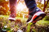 WalkingShoes.620