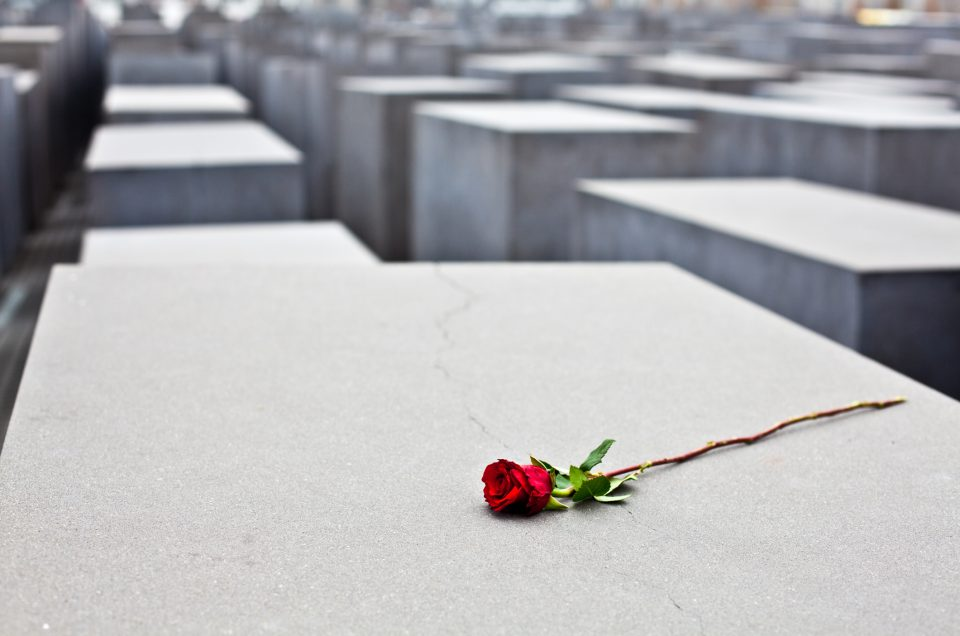 Germany, Berlin - November 17, 2011: Memorial to the Murdered Jews of Europe. The memorial consists of a 19,000 square meters site covered with 2,711 concrete slabs or stelae. A red rose is posed on one of the concrete slabs.