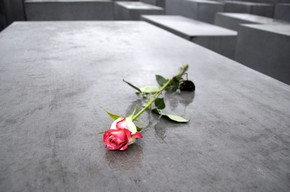 Berlin, Germany - April, 10th 2008: Rose on the wet surface of one of the concrete slabs of the memorial of the murdered jews of Europe.The memorial is designed by Peter Eisenman and engineer Buro Happold. It consists of a 19,000 square meter (4.7 acre) site covered with 2,711 concrete slabs, arranged in a grid pattern on a sloping field.