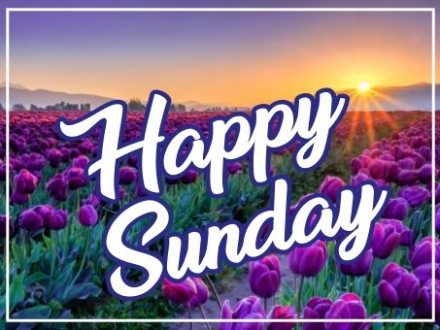 beautiful-happy-sunday-images-wishes-greetings-wishing-pictures-hd-free-download