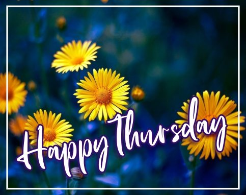 happy-thursday-flowers-wallpaper-pictures-wishes-greetings-images-wishes-free-download