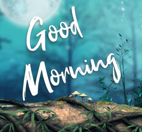 best-hd-good-morning-classic-images-gorgeous-wishing-pics-wallpaper-pictures-blue-free-download