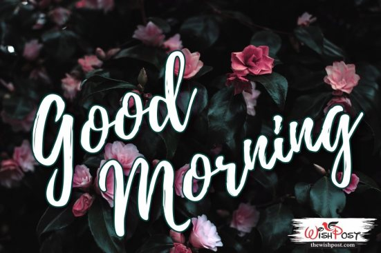 free-good-morning-classic-greetings-wallpapers-images-pics-photos-pictures-wishes-for-sharing-on-facebook