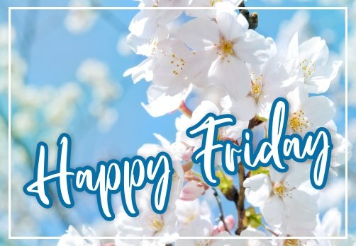 free-happy-friday-flowers-images-pics-wishes-greetings-wishing-pictures-wallpaper