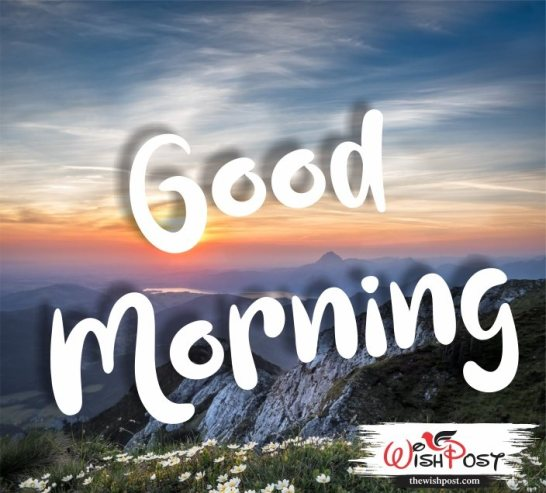 good-morning-images-with-flowers-hd-pic-wishing-photo-picture-wishes-for-whatsapp-status