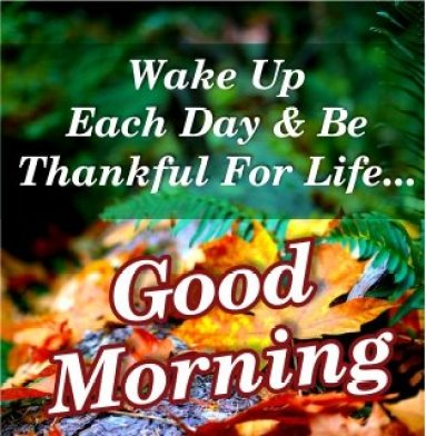 thankful-for-life-good-morning-messages-quotes-images-wallpapers-free-download