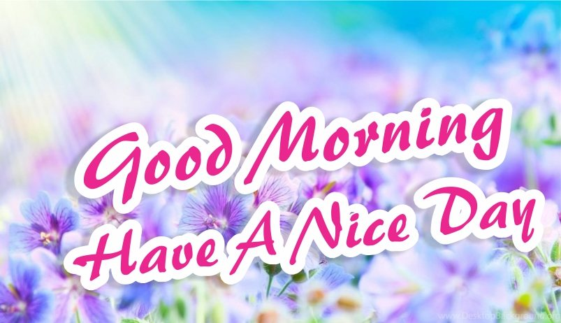 beautiful-good-morning-have-a-nice-day-blue-flowers-hd-images-wishes-wallpapers-wishing-pics-greeting-for-facebook-whatsapp-status--free-download