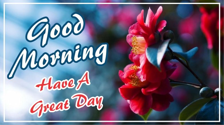 best-good-morning-have-a-great-day-red-flower-images-pictures-wishing-greetings-wallpapers-for-friends-free-download