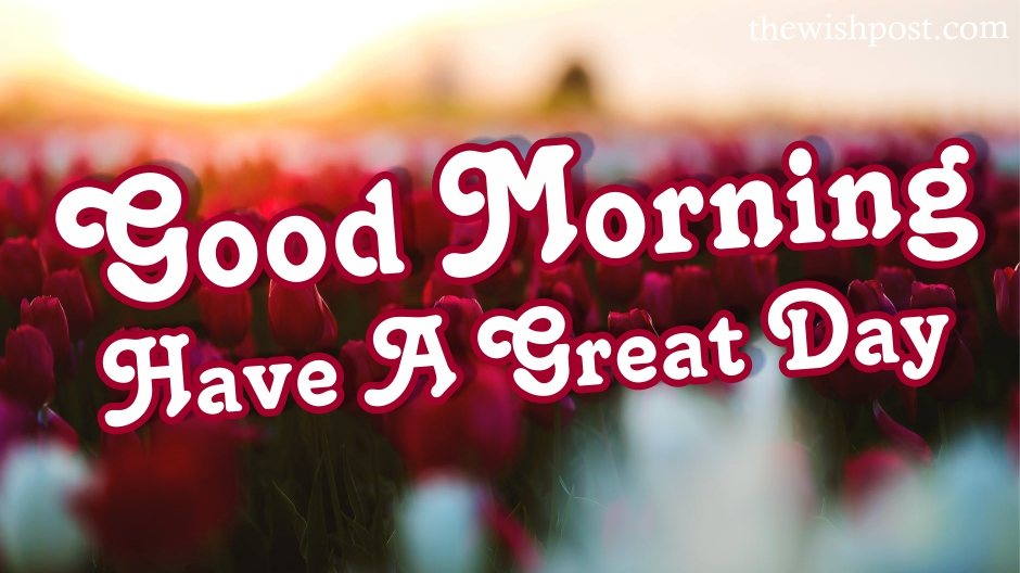 lovely-good-morning-have-a-great-day-with-red-flower-love-images-wallpaper-wishing-pics-greeting-cards-pictures-for-love-friends