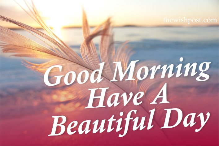 special-lovely-good-morning-have-a-beautiful-day-with-flowers-love-images-wallpaper-wishing-pics-greeting-cards-pictures-for-friends-love-free-download