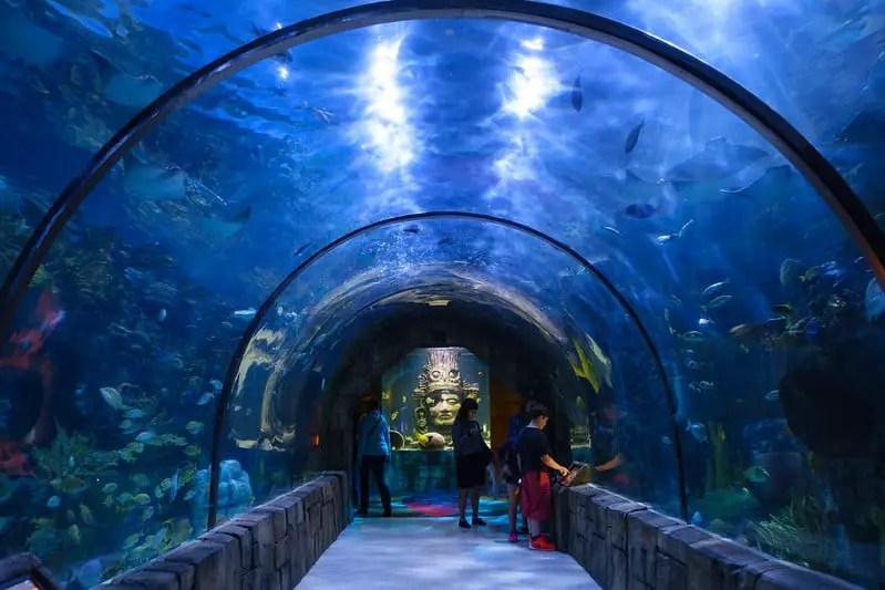 Aquarium tunnel at the Audubon Aquarium of the Americas