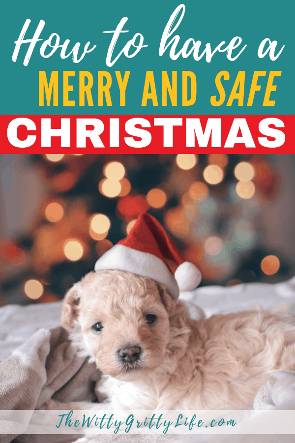 Christmas with all its magic and lights can be a dangerous time. But don't worry, with my simple tips you can make sure that everyone in your house can have a Merry and safe Christmas season without any major mishaps and accidents. Keep pets and kids safe with these steps.