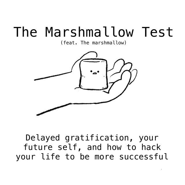 The Marshmallow Test: delayed gratification, your future