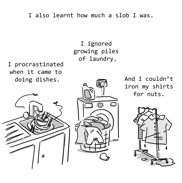 I also learnt how much of a slob I was. I procastinated when it came to doing dishes. I ignored growing piles of laundry. And I couldn't iron my shirts for nuts.
