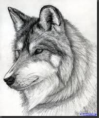 wolfface