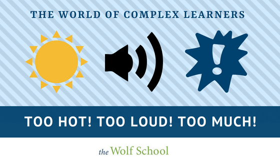 Sensory friendly ideas from The Wolf School