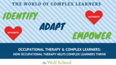 Occupational Therapy and Complex Learners
