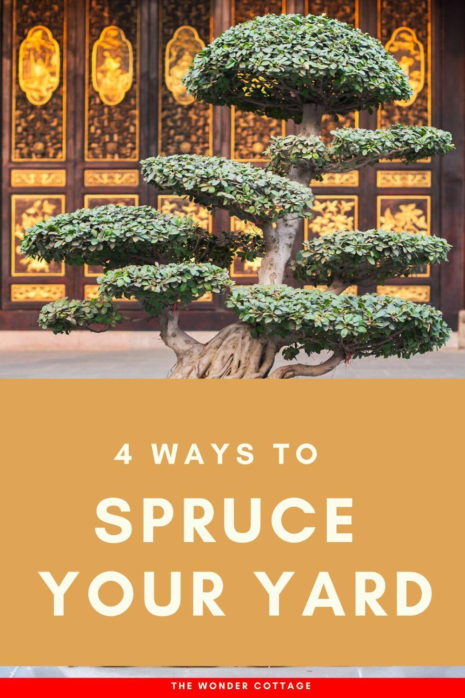 ways to spruce your yard