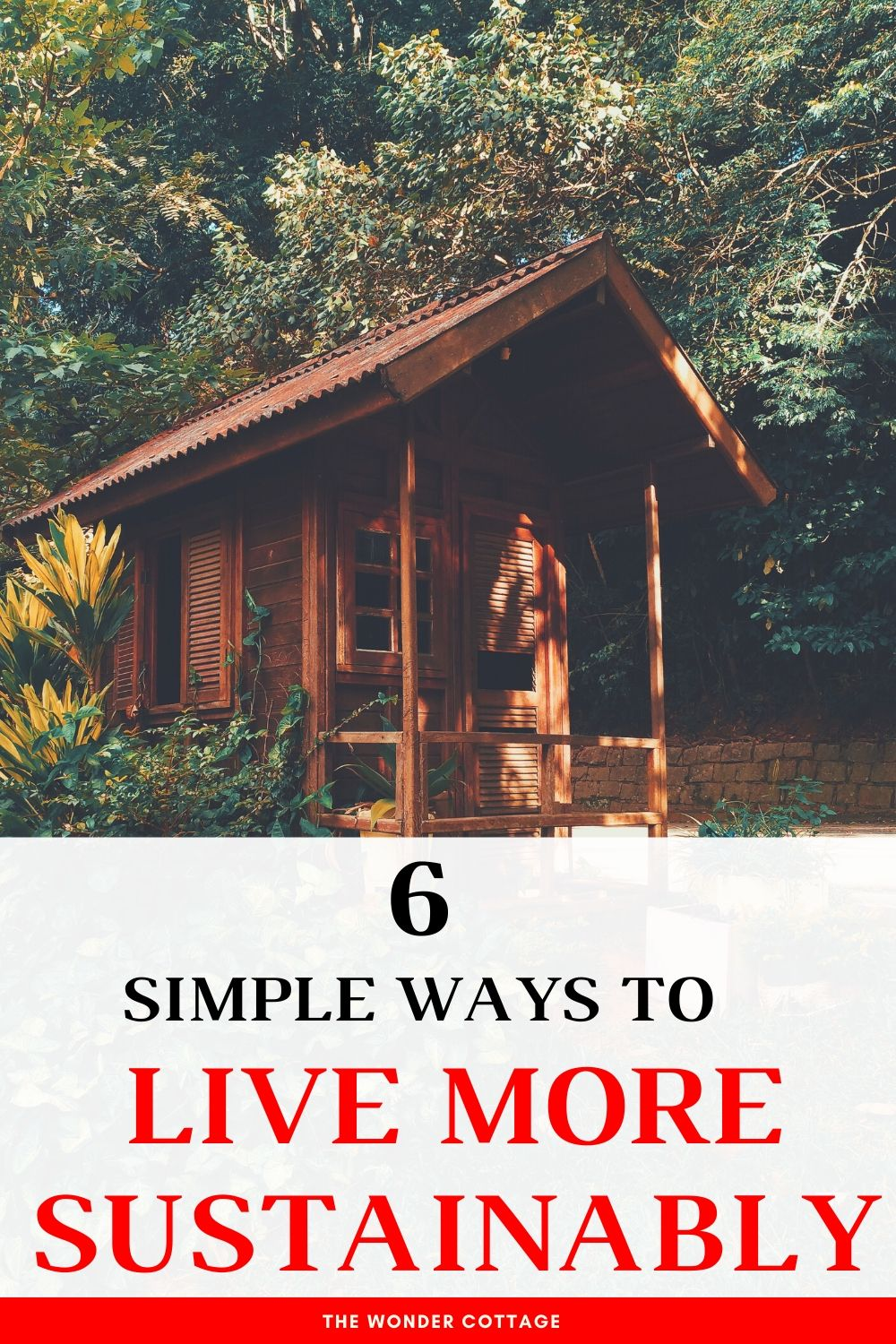 6 simple ways to live sustainably