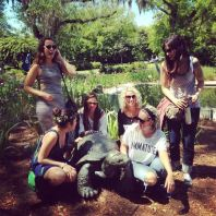 turtle-girls