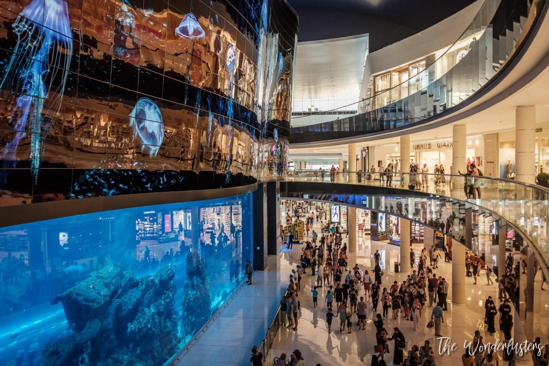 Dubai Aquarium at Dubai Mall