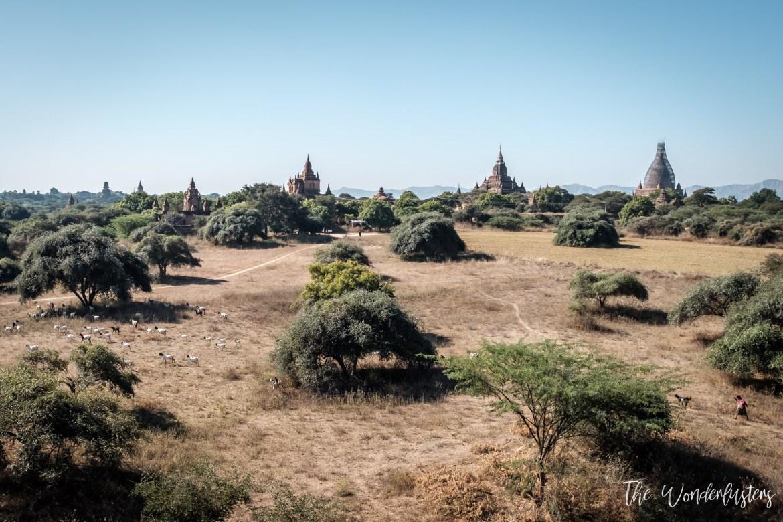 Panoramic View over Bagan