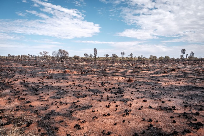 Australia Uluru 46