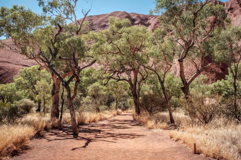 Australia Uluru 57