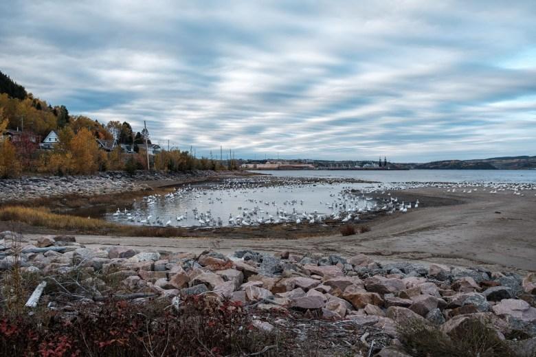 Canada Saguenay 25
