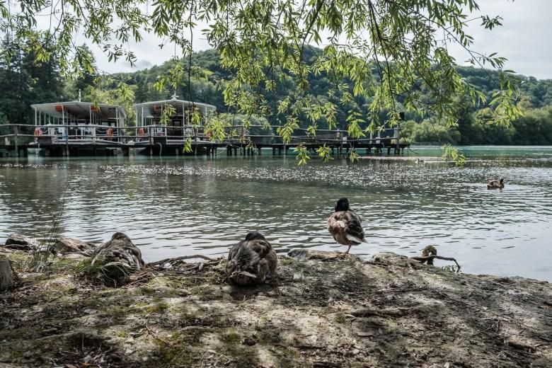 Croatia Plitvice Lakes 11