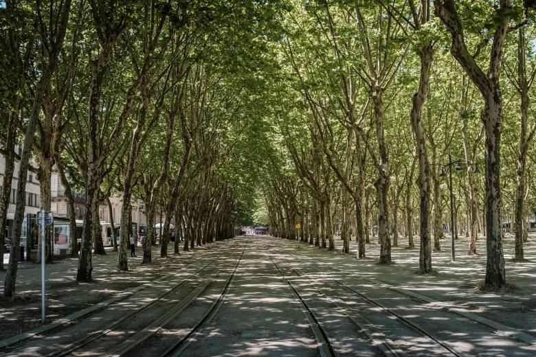France Bordeaux 19