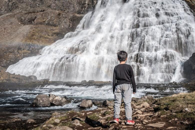 Iceland Westfjords 37