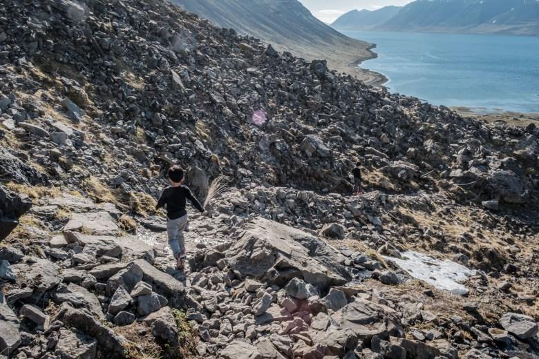 Iceland Westfjords 40