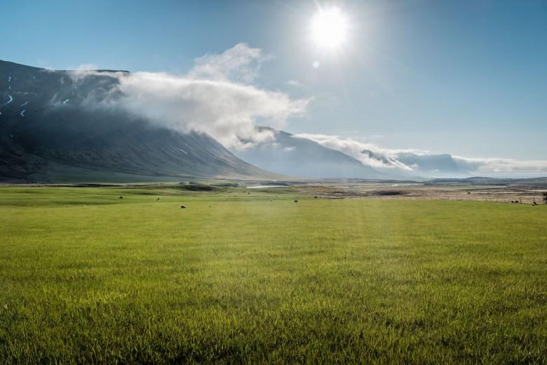 Iceland Westfjords 51