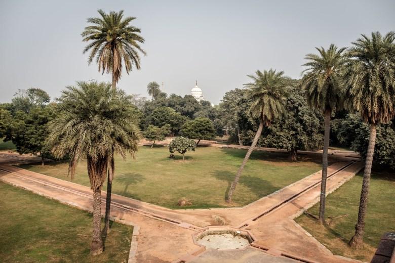 India Delhi 35