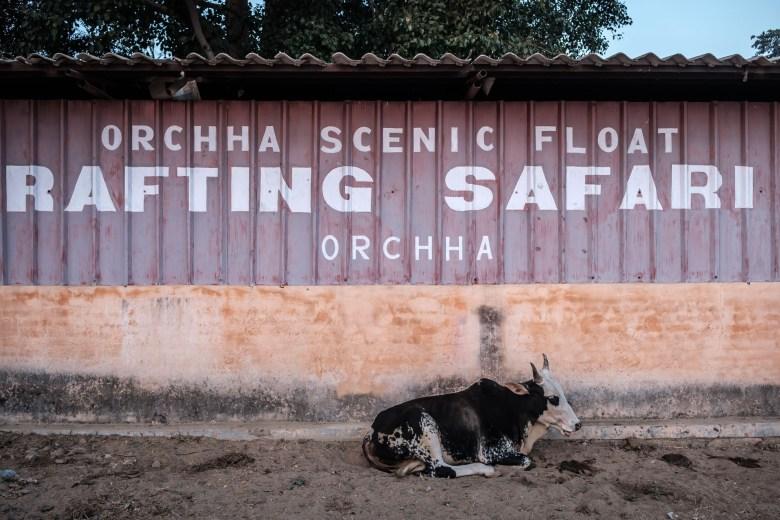 India Orchha 46