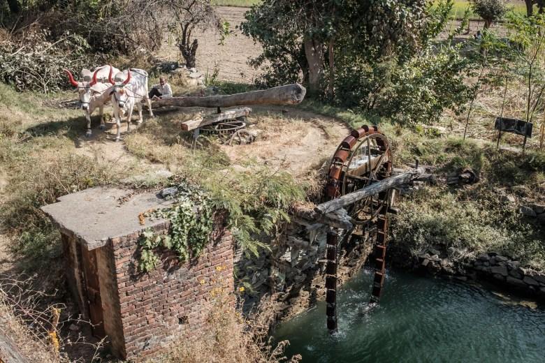 India Ranakpur 01
