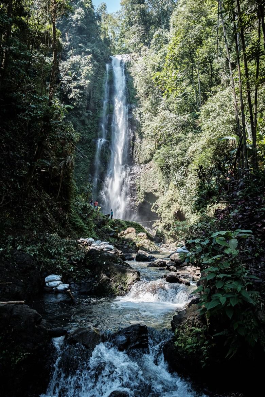 Indonesia Munduk 027
