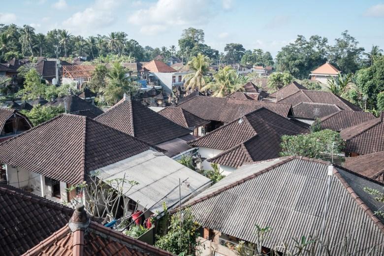 Indonesia Ubud 052