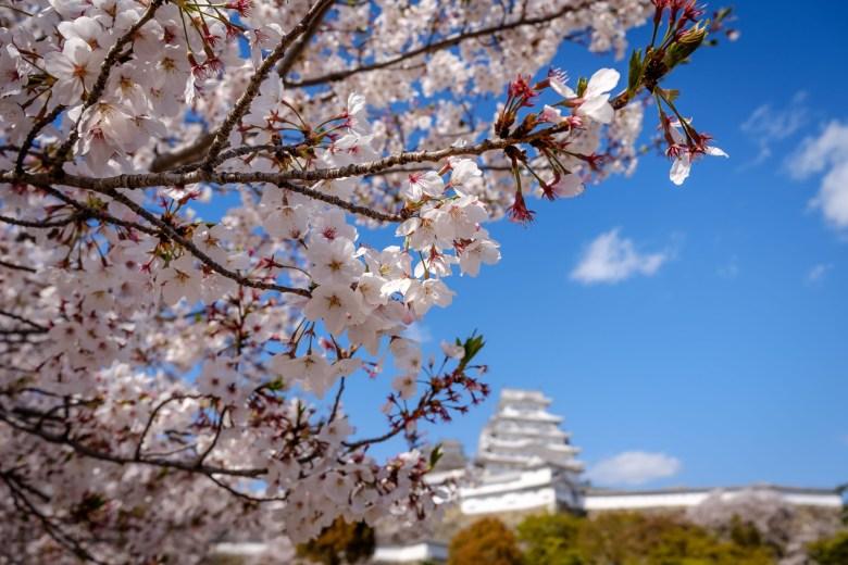Japan Himeji 07