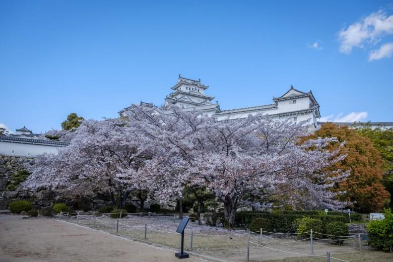 Japan Himeji 11