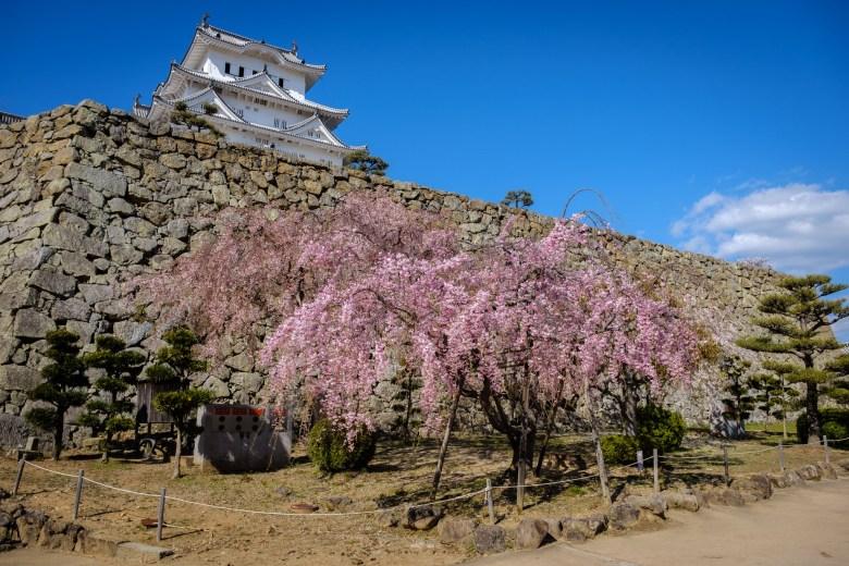 Japan Himeji 25