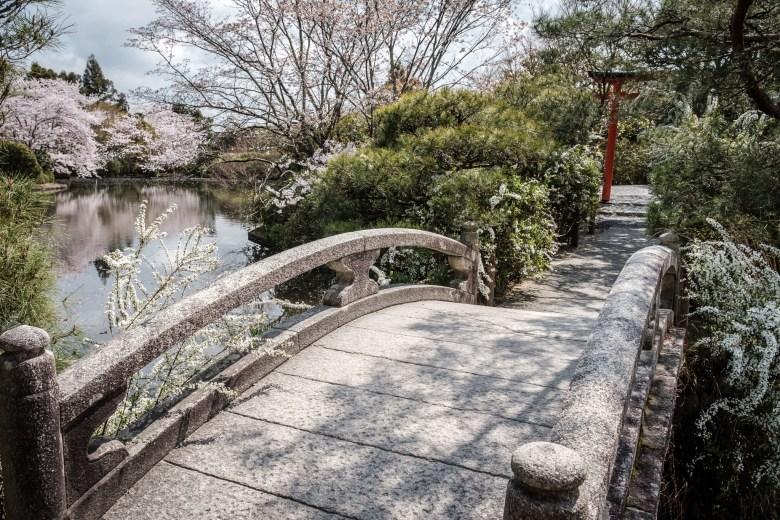 Japan Kyoto 052