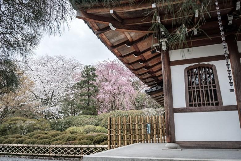 Japan Kyoto 077