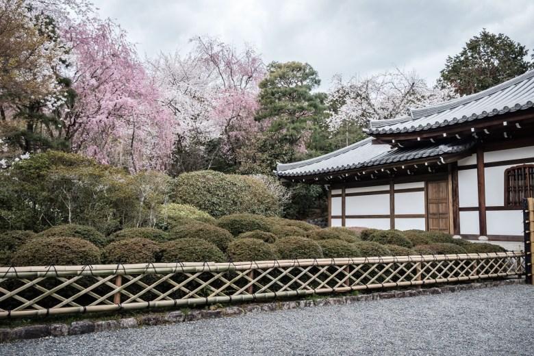 Japan Kyoto 078