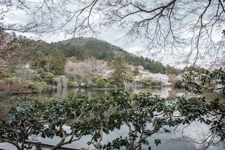 Japan Kyoto 084